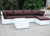 Mtc-266 Hot Sale mobilier extérieur Canapé-Set