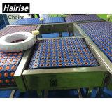 Convoyeur à rouleaux ISO Convoyeur à chaîne à courroie plastique de qualité alimentaire