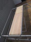 Planche en aluminium / contreplaqué avec trappe et échelle pour échafaudages
