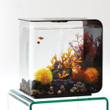 Tanque de peixes marinhos acrílico superior decorativo da tabela de DIY