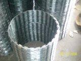 かみそりの有刺鉄線Bto22---工場製造者
