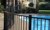 Rete fissa rivestita superiore piana della piscina della polvere di Interpon della parte inferiore piana (2/3 delle rotaie) con il cancello