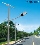 De programmeerbare Lichte ZonneStraatlantaarns van de Wijze met 30W leiden