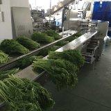 Hoch exakte automatische Lebensmittelgeschäft-Verpackungsmaschine für Gemüse machte Wischer naß