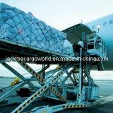 Verschiffen, Versorgungskette, Zollabfertigung und Lager-Services für den verpackendrucken-Beutel, der Maschinen-Farben-Drucken-Presse-Füllmaschine herstellt