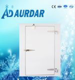 フリーザーの冷蔵室のドアの使用された歩行
