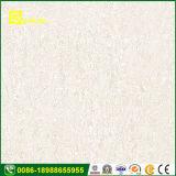 Vele Tegels van de Muur van Kleuren Binnen Ceramische van Met maat 600 X 600mm