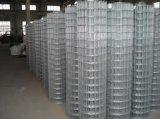El acero inoxidable amplió el acoplamiento de alambre soldado galvanizado acoplamiento del metal