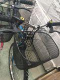 Bicicleta de 26 senhoras MTB