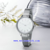 Orologi di vendita caldi dell'acciaio inossidabile (WY-17035A)