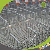Stalle individuelle de matériel de bétail pour la ferme de porc moderne