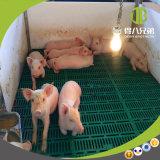 돼지 축사 시스템에 있는 저가 고품질 돼지 이유 축사