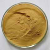Congelados a granel de alta calidad de jengibre deshidratada en polvo, el extracto de jengibre, el Jengibre P. E.
