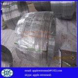 Fil galvanisé ovale 2.2X2.7mm pour la frontière de sécurité de ferme