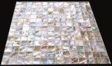 [بروون] [فرش وتر] قشرة قذيفة 20*20 على شبكة فسيفساء
