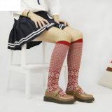 Calzini delle calze del cotone del jacquard del Tube Ginocchio-Alto Double Cylinder delle ragazze delle donne della signora (TA215)