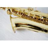 La Chine usine Saxophone Woodwind Instrument