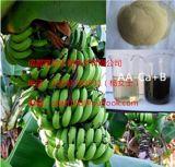 Порошок аминокислота Souce 60% завода