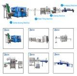 Machine de remplissage en plastique automatique d'eau potable de bouteille (4000bph)