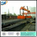 Отбрасывая стальные заготовки поднимая магнит MW22-14065L/1