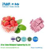 ISO одобрил порошок клубники 100% чисто естественный органический Freeze-Dried, высокое качество Freeze-Dried порошок клубники