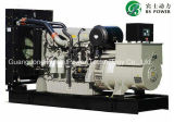 마라톤 발전기 (BPM160)를 가진 200kVA Perkins 디젤 엔진 Genset