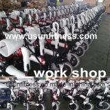 E-Bike алюминиевого сплава 2018 складывая с батареей лития 48V