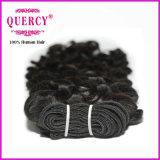Высокое качество заготовки оптовые цены на Виргинских Cuticle совмещены волос