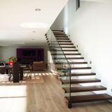 Framless 강화 유리를 가진 LED 단단한 나무 똑바른 계단
