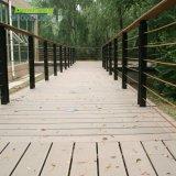 Decking di legno esterno vuoto & solido del composto WPC per il giardino/iarda