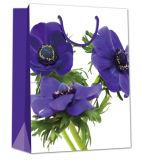 Saco agradável bom da embalagem do presente do projeto da flor do Sell em Europa