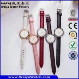 ODM-beiläufige Fabrik-Quarz-Dame-Armbanduhr (Wy-059E)