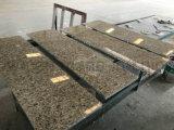 Comitato di alluminio incastonato del favo della pietra di avanzamento della vite per la facciata della parete