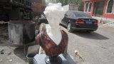 Scultura di pietra, giardino che intaglia, scultura del giardino, scultura del granito (XJL-SC02)