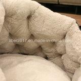 회색 형식 디자인 개 소파 애완 동물 침대 고양이 침대