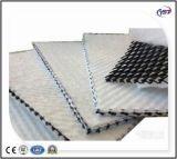 Tri-Planar Geonets Géocomposite de drainage en HDPE/pour la route