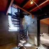 Цельная древесина углеродистой стали ретро спиральной лестницей
