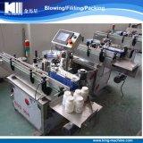 高品質の自動分類機械前部および背部分類