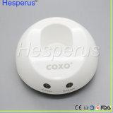 Moteur endodontique Hesperus de matériel Endo dentaire sans fil sans fil de traitement