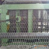 [أنبينغ] مصنع [بلستيك كتينغ] دجاجة قفص شبكة [وير مش] سداسيّة