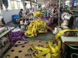 Imbracatura del poliestere della tessitura di alta qualità En1492-1