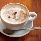 초점 Selfie 커피 식용 케이크 잉크 Latte 커피 DIY 인쇄 기계