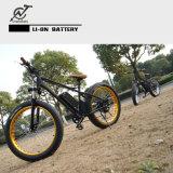 [1000و] مدينة [شنس] خضراء درّاجة كهربائيّة سمين مع [لكد] عرض