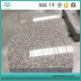 Granito rosso Granite/G644 per le mattonelle di pavimento/il granito/controsoffitto/giardino/stanza da bagno