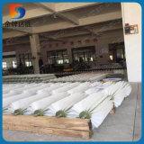 Professionelle industrielle Kartoffel-Karotte-Gemüse-Orangen-Frucht-trägt waschende Zylinder-Rolle Hersteller auf