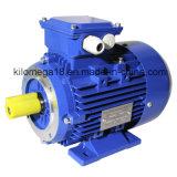 Трехфазный электрический двигатель чугуна с ISO