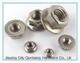 육 플랜지 견과 및 큰 육 플랜지 견과 (DIN6923 S.S. 304, 316 A2-70)