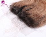 I capelli del Virgin collegano il colore del Blonde di Ombre