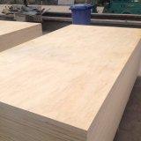 Álamos/Pino /contrachapado de abedul Core/comercial y de contrachapado de madera contrachapada de alerce para muebles