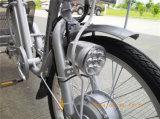 36V 250W Shopping Tricycle électrique pour le vieil homme